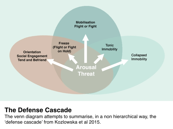 CNS Trauma Defense Cascade.002